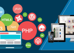 Which technology for website development